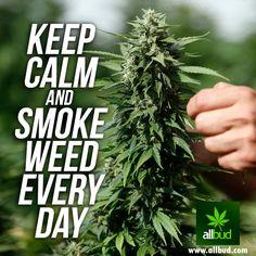 Keep calm and smoke weed every day! #allbud #marijuana #cannabis #weed #smoke #everyday #use #medicalmarijuana #legalization #legalizemarijuana #healthy #enjoy