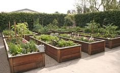 raised gardening beds Wonder if this would work better than trenching for the fungus in my flower beds? Veg Garden, Vegetable Garden Design, Garden Boxes, Easy Garden, Fruit Garden, Raised Garden Beds, Raised Beds, Outdoor Landscaping, Outdoor Gardens