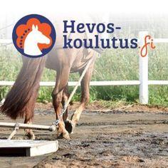 Ratsastuskentän lanaaminen hevosella - verkkokurssi. Ohjeet lanan tekemiseen ja työn aloittamiseen alan ammattilaisilta.