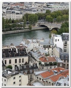 the seine & rooftops of paris, taken from the top of notre-dame.