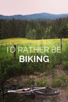 Where Mountain Biking Meets Meditation   Between the Stumps