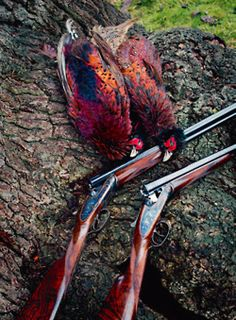 Now that the spring turkey-hunting season is nearly upon us, you should find the right shotgun. As turkey hunting has become increasingly popular, more and more manufacturers have developed shotguns that have more features. Deer Hunting Tips, Pheasant Hunting, Hunting Rifles, Duck Hunting, Hunting Stuff, Grouse Hunting, Hunting Trips, Turkey Hunting Season, Hunting Equipment