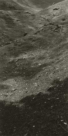 Jan Henle, 'Con el Mismo Amor IV,' 1999-2009. Film drawing; selenium toned gelatin silver print. 130 x 65.875 inches