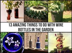 13 Amazing Things To Do With Wine Bottles In The Garden | Health & Natural Living