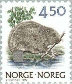 Stamp: Eurasian Beaver (Castor fiber) (Norway) (Nature) Mi:NO 1039,Sn:NO 883B,Yt:NO 998,Sg:NO 1024,AFA:NO 1036