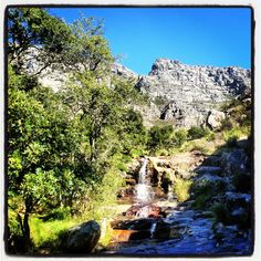 #tablemountain #capetown #waterfall #hiking #picnic in the #forest #nature #southafrica #7wondersofnature