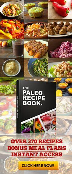 Paleo Recipe Book | Over 370 Easy Paleo Recipes Bonus Meal Plans - Instant Access