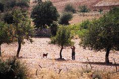Vacanze in famiglia a Creta http://www.piccolini.it/post/674/vacanze-in-famiglia-a-creta/