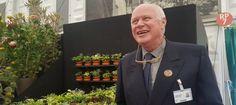 Jonathan Hogarth and his Hostas at the RHS Chelsea Flower Show 2017 - Pumpkin Beth Shows 2017, Chelsea Flower Show, Pumpkin, Conservation, Flowers, Designers, Heaven, Plant, Garden