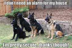 I wish I could lower the sound of my two alarms sometimes they are a little too loud!