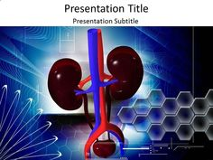 Kidney powerpoint template download kidney powerpoint templates kidney function powerpoint template is embedded with amazing characteristic and looks medical toneelgroepblik Gallery