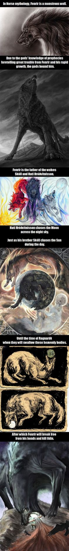 Wolves In Norse Mythology. (Nice picture of Fenrir eating Odin at the end....)