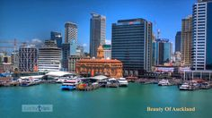 Auckland Beautiful View