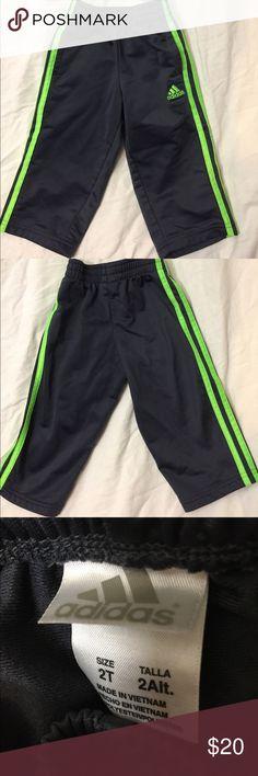 Adidas Jogging Pants  2T  like new! Pants look brand new! 10 Crosby Derek Lam Bottoms Sweatpants & Joggers