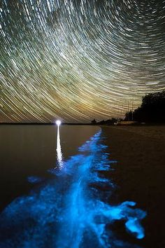 AGE NEWS PIX SUPPLIED FROM PHIL HART 28/1/2013 Bioluminescence is appearing again in the Gippsland Lakes. STORY BRIDIE SMITH