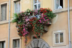 Flowered Balcony by caribb, via Flickr