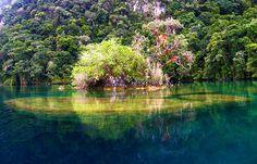 Laguna Miramar, selva lacandona, Chiapas