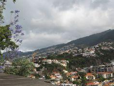Quinta do Achada / Jardens do Lago. Mieke Löbker Madeira Picasa Webalbums