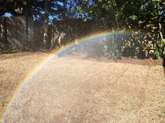Clicked By Bao L of San Bruno, California  35 Breath-Taking Pictures That Were Clicked On An iPhone 6 • Page 2 of 6 • BoredBug