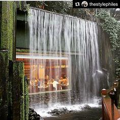 Almoçar ou jantar neste restaurante em Hong Kong deve ser muito gostoso não é?  #Repost @thestylephiles with @repostapp  Don't go chasing waterfalls capture one of your very own at Chi Lin vegetarian restaurant in Hong Kong! #waterfall #restaurant