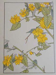 Art Nouveau Flowers And Plants