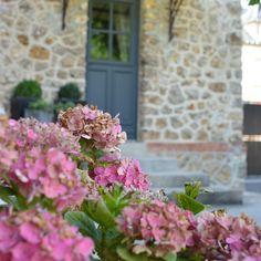 Retour à la maison et ses hortensias un peu grillés Belle journée à vous ☀️ #athome#blog#deco#jardin#fleurs#hortensia#marielapirate#blogreims#blogdecoreims#decoreims