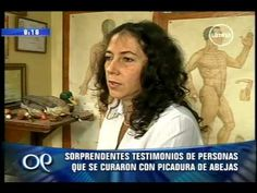 Visita: http://www.abejascurativas.com La segunda parte del completo informe acerca de la apiterapia y sus beneficios para la salud! Los esperamos en nuestro...
