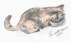 The Creative Cat - Daily Sketch Reprise: Cookie Has a Drink