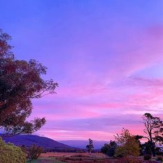 ele (@eat.live.escape) • Instagram photos and videos Beautiful Sunrise, Sunrises, Clouds, Australia, Celestial, Photo And Video, Live, Eat, Videos