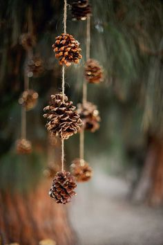 Simple pinecone hanging or Christmas decoration. Crafts DIY Pine Cone Crafts for Christmas which are a true expression of natural beauty - Saudos Christmas Minis, Christmas Photos, Winter Christmas, Christmas Time, Diy Christmas Banner, Pinecone Christmas Crafts, Minimal Christmas, Modern Christmas, Christmas Ideas