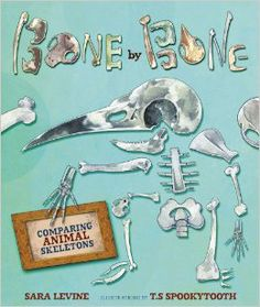 """""""Bone by Bone asks kids to imagine what their bodies would look like if they had different configurations of bones, like extra vertebrae, longer limbs, or fewer fingers. """"What if your vertebrae didn't stop at your rear end? What if they kept going?"""" Levine writes, as a boy peers over his shoulder at the spinal column. """"You'd have a tail!"""""""""""