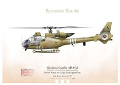 "British Army Air Corps ""Operation Granby""    Helicopter Unit Iraq, Basra. January, 1991"