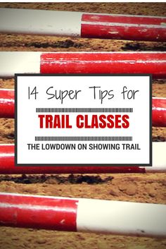 The Lowdown on Showing Trail: 14 Super Tips for showing your American Quarter Horse in Trail Classes | Horse Showing