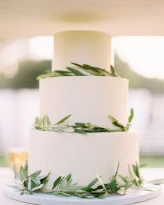 """Candy Bar Cake - A """"candy bar"""" cake (vanilla with a chocolate ganache, peanut butter, and salted caramel filling) finished with buttercream and fresh olive branches."""