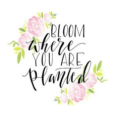 New Quotes Calligraphy Doodles Inspiration Ideas New Quotes, Motivational Quotes, Life Quotes, Inspirational Quotes, Yoga Quotes, Family Quotes, Flower Quotes Love, Flower Qoutes, Bloom Quotes