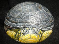 Painted Rocks /Hand Painted Turtle stone