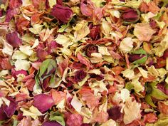 Biodegradable petal confetti - Raspberry and Pale Pink Delphiniums with Mini Rose Buds - lovely!