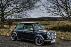 Mini Stance - Page 178 - Styling Classic Mini, Classic Cars, Mini Coopers, Mini Me, Cool Cars, Badass, Joggers, British, Sport