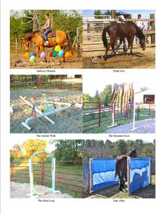 Obstacles for horse training. Great ideas for clicker training and horse agility, or just to desensitize your horse to things you might encounter while trail riding.