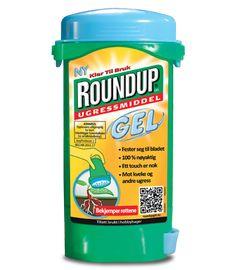 Strandvindel: Roundups ugressveiledning til ettårig ugress i hagen | Roundup Ugressmiddel