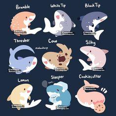 I luv the last three Chibi Sharks Cute Kawaii Drawings, Kawaii Art, Anime Kawaii, Shark Drawing, Baby Drawing, Cute Shark, Baby Shark, Shark Art, Cute Doodles