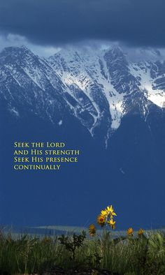 Seek the Lord and His strength, seek His presence continually