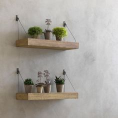Etagère Roots, Am.Pm – Could DIY these shelves – Etagère Roots, Am.Pm – Could DIY these shelves – Floating Shelves Bedroom, Room Shelves, Wooden Shelves, Diy Hanging, Hanging Plants, Potted Plants, Slat Wall, Plant Shelves, Hanging Shelves