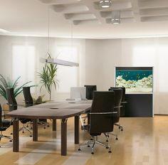 Una opción original y diferente a la hora de buscar la decoración de una oficina es un acuario.