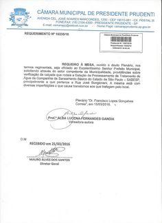 Profª Alba Lucena: Requerimento calçadas em volta da Estação da SABES...