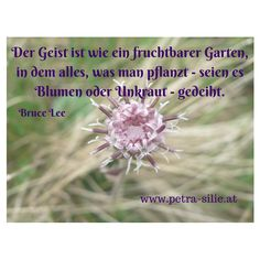Der Geist ist wie ein fruchtbarer Garten, in dem alles, was man pflanzt - seien es Blumen oder Unkraut - gedeiht.