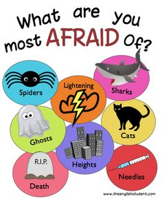 What are you afraid of? Can you add anything else?