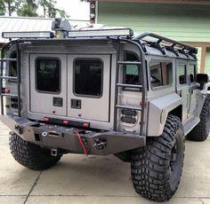 Hummer survival