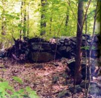 Some of the Dudley Town ruins