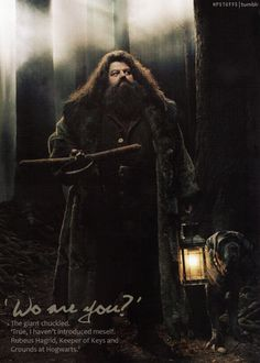 Rubeus Hagrid, Keeper of Keys and Grounds at Hogwarts.